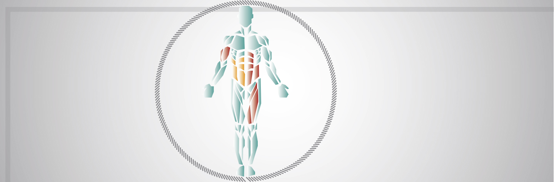 Elektro Muskel Stimulation